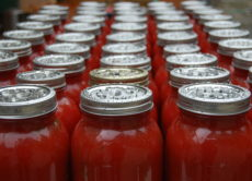 Pasta Sauce business for sale.