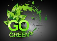 Buy a green business.