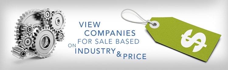 Business Broker Company for Sale