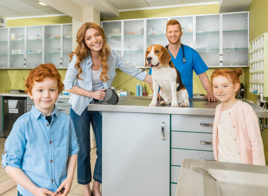 Business Brokers for veterinarian and petcare businesses
